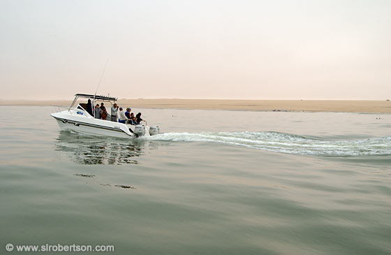 Photo: Seal and Dolphin Tour, Walvis Bay