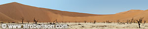Dead Vlei Panorama (1) - Click for large image