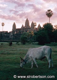 Cambodia - Click for photo gallery