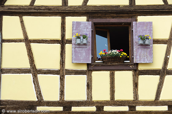 Dambach-la-Ville Window 2