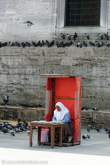 Istanbul New Mosque Pigeons 4