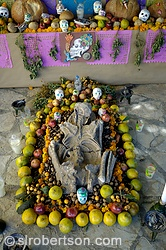 Zapotec Skeleton found in tomb at Monte Alban displayed in Day of the Dead Altar