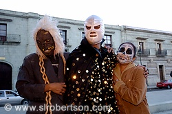Day of the Dead Costumes 2