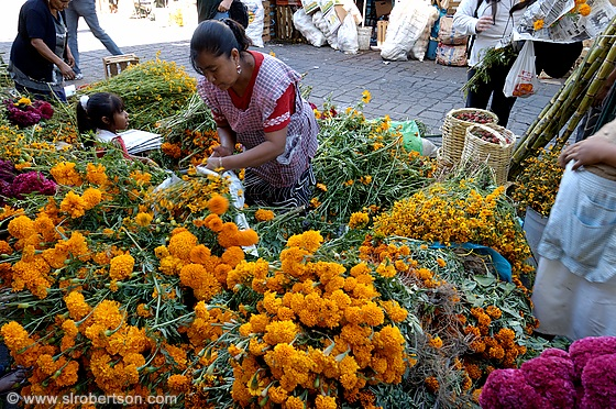 photo of day of the dead flowers for sale scott l robertson