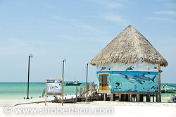 Pictures of Holbox Island