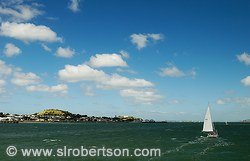 Auckland harbor with sailboat and Mt. Victoria