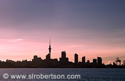 Auckland Skyline at Sunset #1