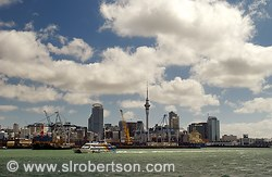 Auckland Skyline and Ferry