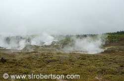 Steam vents and fumeroles, Craters of the Moon Park