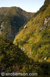 Glacial ravines in Doubtful Sound