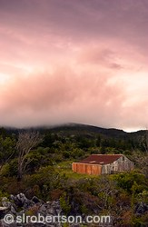 Sunset landscape with red roofed sheep shearing shed