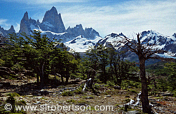 Pictures of El Chalten - Fitz Roy