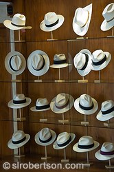 Panama Hat Shop 1