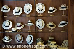 Panama Hat Shop 2