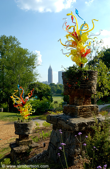 Photo Of Chihuly In The Garden 3 Scott L Robertson Photography