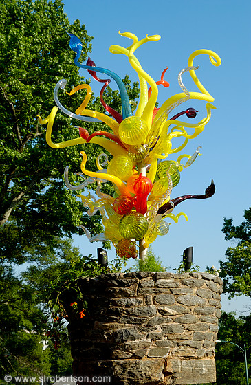 Photo Of Chihuly In The Garden 10 Scott L Robertson Photography