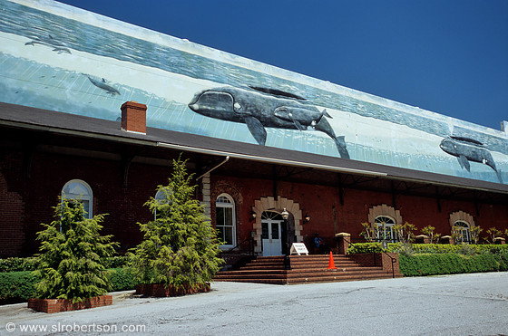 Georgia Railroad Freight Depot and Wyland Whaling Wall, Underground Atlanta